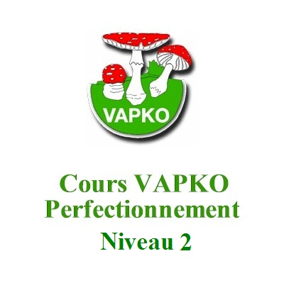 Cours Perfectionnement 2