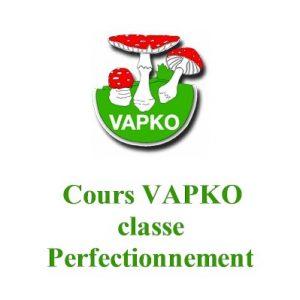 Classe Perfectionnement