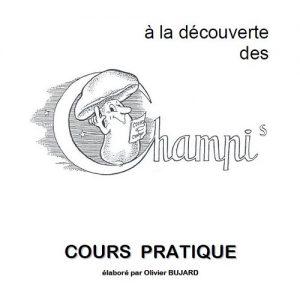 Cours Pratique Olivier Bujard